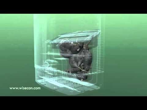 Wisebox trampa inteligente de captura multiple para - Como hacer una trampa para ratas ...