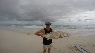 The Mighty Mulloway Quest: Episode 8 - Far West Coast Variety!