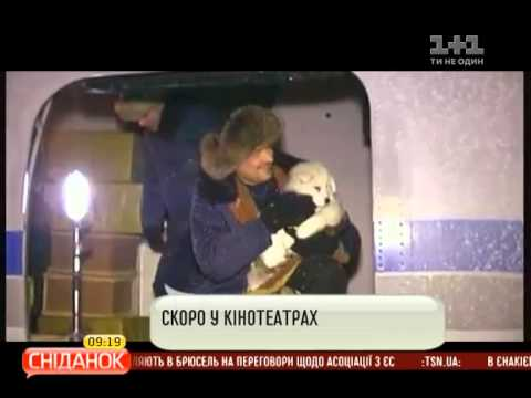 Фильм Полярный рейс на плюсах