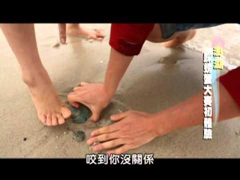全家出走中-20130421 5/5 澎湖/採螃蟹大賽初體驗