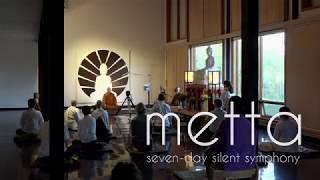 Metta: Seven-day Silent Symphony