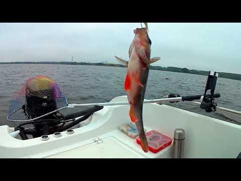 как искать рыбу эхолотом с лодки