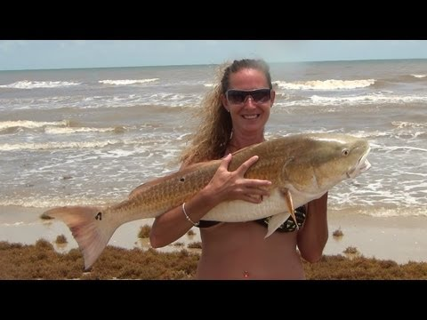 Surf Fishing For Bull Red Fish, 40