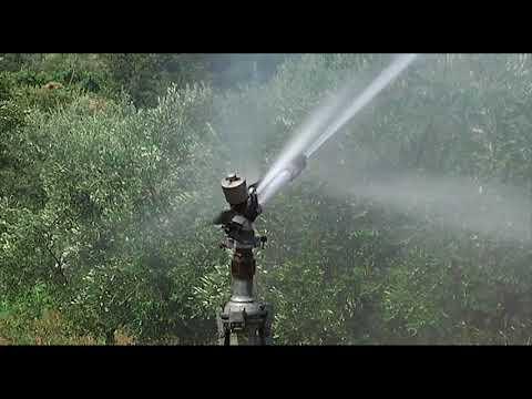 Servizio TG del 03.08.18:  Acque Veronesi invita i cittadini a non sprecare l'acqua.