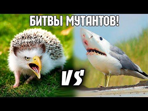 Крафтим Мутантов! - Mutant Fighting Cup