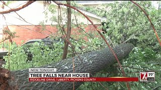 Tree crashes across home, garage seconds after man gets out of car