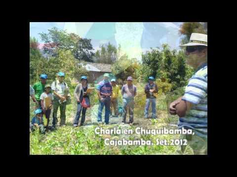 Charla Chuquibamba 09.12.