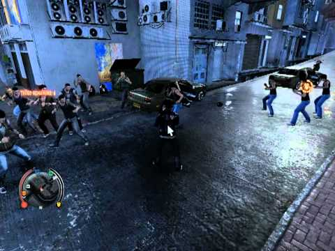 1 vs 12-Sleeping Dogs