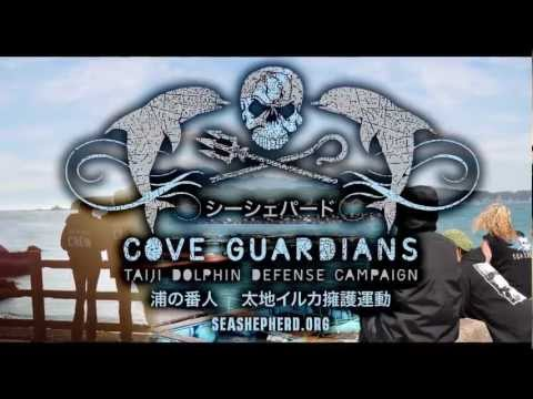 "Die ""Cove Guardians"" Kampagne"