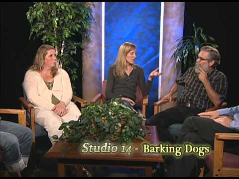 view Barking Dogs video