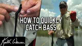 How to QUICKLY Catch LOTS of Bass - The Texas Angler #3