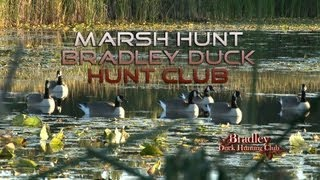 Bradley Duck Hunting Club - Marsh Hunt