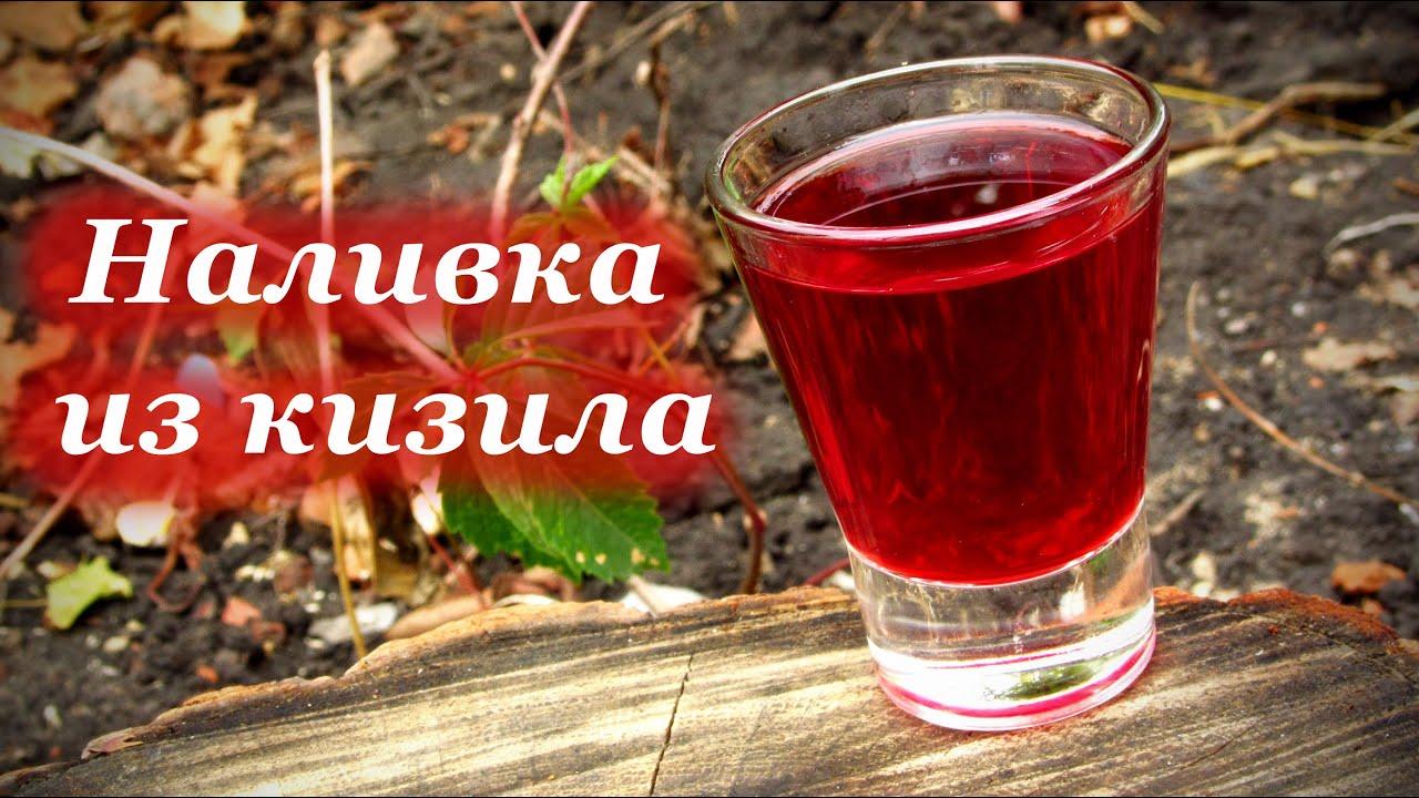 Вино из черной смородины - простой рецепт в домашних условиях 9