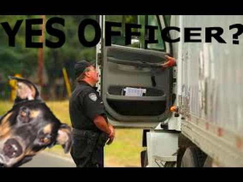 YES OFFICER? (MLD298) My Trucking Life