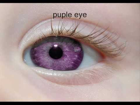 Alexandria's Genesis PURPLE EYES
