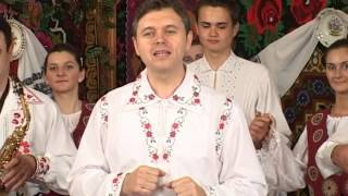 Doru Taranu & Puiu Codreanu  -  Verde-i frunza la fraguta
