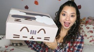 My Fall PUSHEEN BOX has arrived!