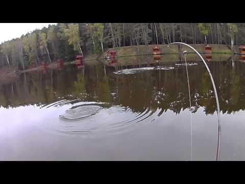 рыбалка в чулпаново подольский район