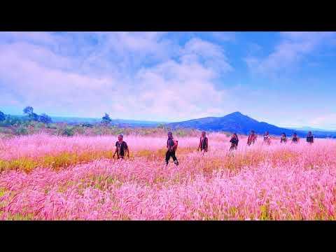 Mùa cỏ hồng Đắc Đoa - Thơ: Thanh Hiếu, Nhạc: Quỳnh Hợp