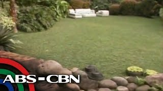 Coco Martin shows off his chic garden
