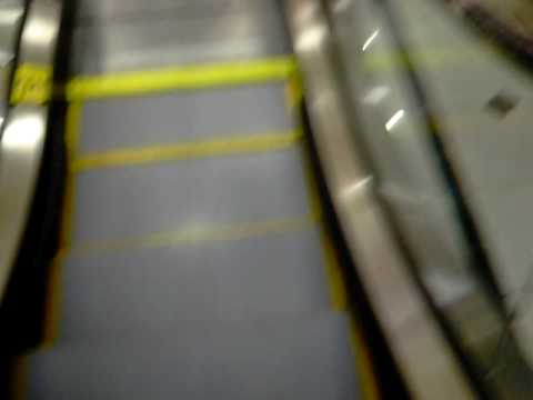 Schindler Escalators in Nordstrom - Natick Collection - Natick, MA