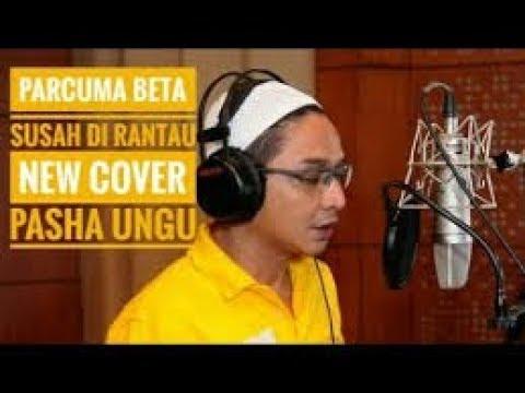 Lagu Ambon Parcuma New Version stenly