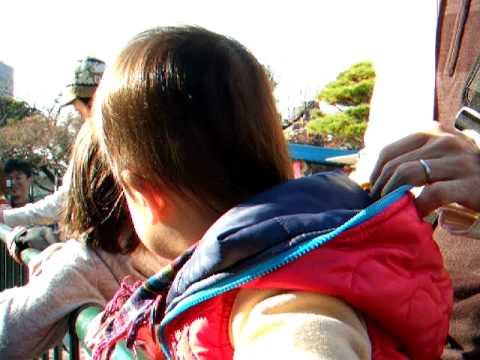 22 11 20  徳山動物園 ペンギン 038