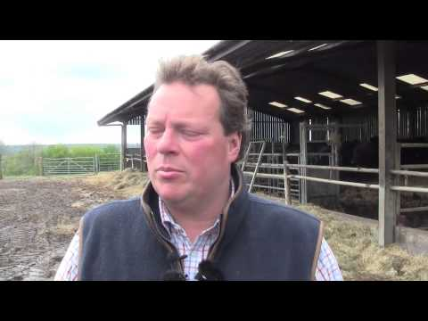 Beef farmer opens farm doors to show bovine TB devastation