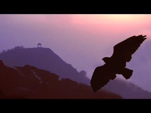 Pan Flute Romantic Instrumental Music   More Than 2 Hours Of Flute De Pan Love Songs video