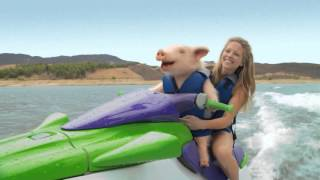 Funny Geico Commercials