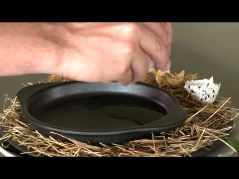 Rene Redzepi maakt zijn populairste gerecht- 'De kip en het ei'