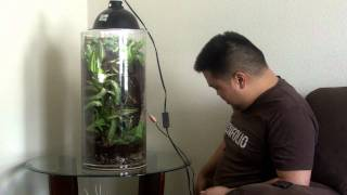 Cylinder Terrarium for Dart Frogs