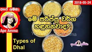 Kadala / dhal varieties