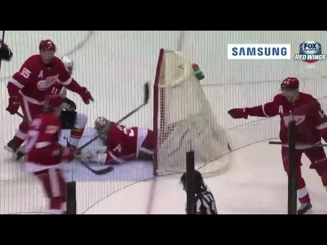 Coach's Challenge: Panthers vs. Red Wings