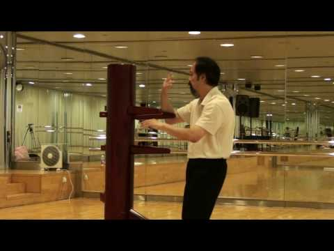 Ving Tsun - Wooden Dummy - Wing Chun (Teaching demonstration) Image 1
