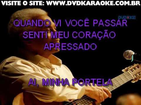 Paulinho Da Viola   Foi Um Rio Que Passou Em Minha Vida