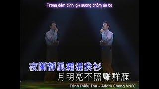 """[Vietsub] Lưu Hương Hận 留香恨 - Trịnh Thiếu Thu 鄭少秋 (Nhạc phim """"Sở Lưu Hương"""" 1979)"""