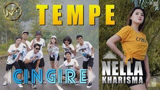 Download lagu Nella Kharisma Ft. Cingire - Tempe []