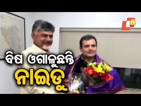 Andhra Pradesh CM Chandrababu Naidu meets Congress president Rahul Gandhi
