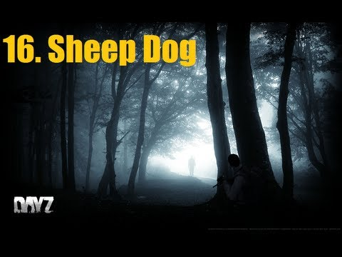 DayZ - Chernarus Survival Ep16 - Sheep Dog