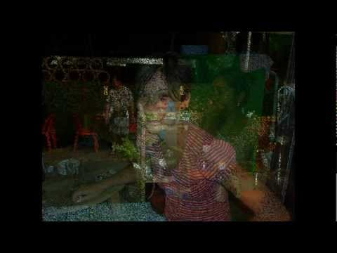 Bookbar- Bangkok Bar and Bookshop -Thailand.mp4