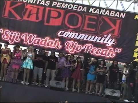 Pertemuan New Palapa Karaban Pati 2012 video