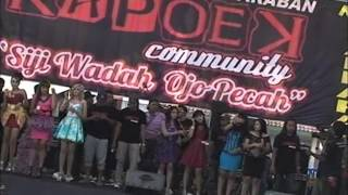 download lagu Teman Biasa-new PALLAPA gratis
