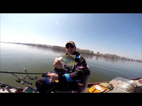 Crappie Fishing Reelfoot Lake, March 30, 2014