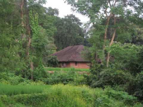 Savarkhed Ek Gaon - Varayvarti Gandh