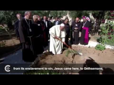 Pope Francis visits Gethsemane, Cenacle