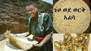 Hailemariam Desalegn - የዛሬው የሶሻል ሚዲያወችን ያጨናነቀው የሀይለማሪያም ሰፌድ