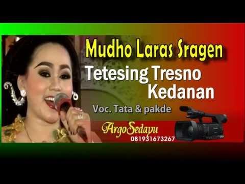 Mudho Laras 2016 TETESING TRESNO ~ KEDANAN Cokek Mania