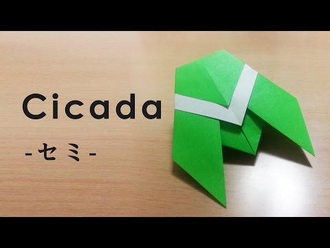 How to Make an Easy and Fast Origami Cicada~Japanese Culture & Traditional Craft 折り紙,蝉,伝統文化