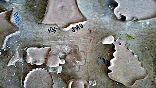 Как сделать елочные игрушки из гипса